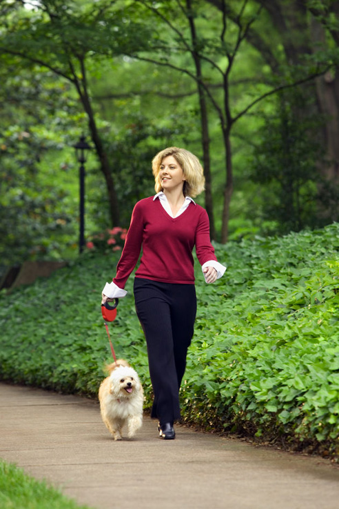 how to go for walk to lose weight