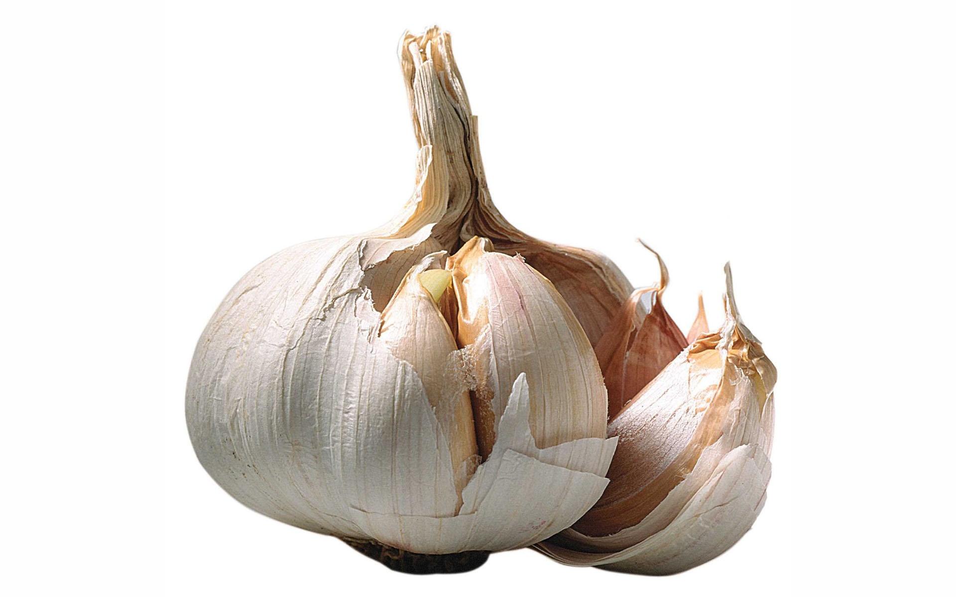 http://dietandi.com/wp-content/uploads/2011/11/Garlic.jpg