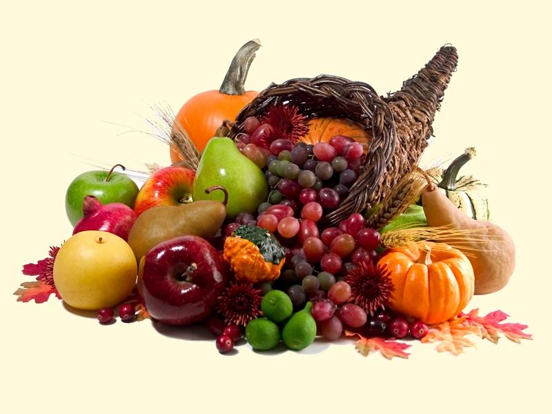 jesenje blagodeti
